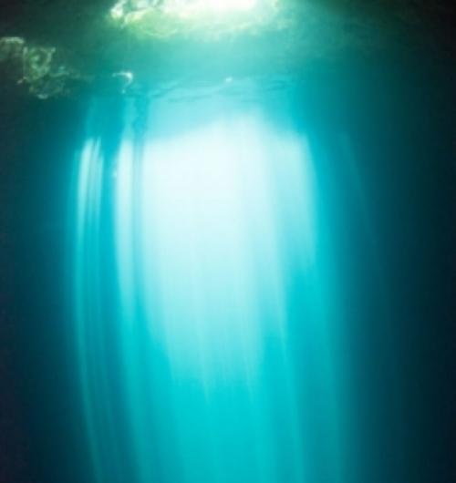 freediving-image.jpg