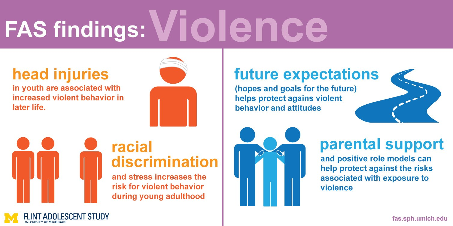 Taken from: http://fas.sph.umich.edu/findings/violence/