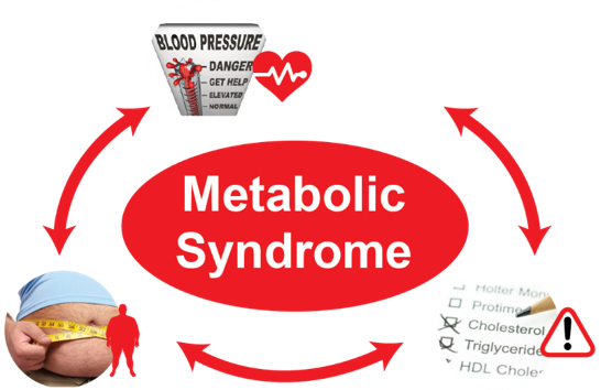 SWEET Institute+metabolic_syndrome+problem+public+mental+health+mardoche+sidor.png