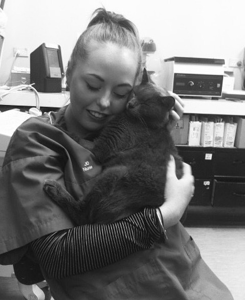 """Why I'm Leaving Veterinary Nursing - DISCLAIMER: This is just one nurses opinion.  This photo was taken during my first job as a Veterinary Nurse. This is one of the first patients I got really attached to and had been nursing in clinic for weeks. He took a turn for the worst during the same week this photo was taken and didn't make it.  I still haven't forgotten how that made me feel. There have been so many like him since too.. that you become so in love with and put your entire being into helping and when they don't make it, it tears you apart, it feels like it's one of your own. Every time. No matter how many times you experience it. The pets we look after aren't just another animal, these are people's babies.  Still to this day when I tell people I am a Veterinary Nurse, I get the same response. """"Oh so you see cute puppies and kittens all day!"""" … I wish. One of the major problems that cripples the Veterinary industry is peoples perceptions of what we do.  It's not patting kittens and puppies all day, at all. It's having very sick animals' lives on your hands, it's being responsible for restricted medicines, it's having 10 different patients needing your help at once, it's phones ringing constantly and serving people with a smile, it's being yelled at by clients for things out of your control, it's being told it's """"YOUR FAULT my animal has died!"""", it's crying with an animals owners during a euthanasia, it's not sitting down all day, it's cleaning up bodily fluids, it's second guessing and accurately calculating drug doses, it's the vets yelling at you because you forgot to do what they asked you to do half an hour ago because you were busy with other things, it's staying late to finish what needs to be done and taking all of that day's stresses home with you to dwell on.  All of this and more we are responsible for. The reason I got into this industry is because animals are my whole life. I knew that I was getting into a low paid job. I went to university, got a"""