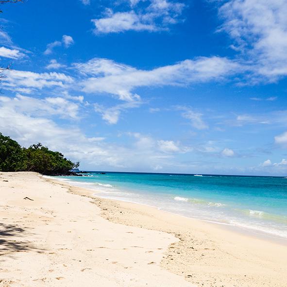 tony_beach.jpg