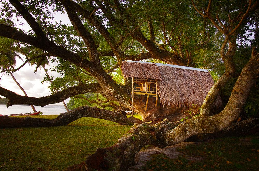 PORT-OLRY_BUNGALOWS_TREE-HOUSE_038.jpg
