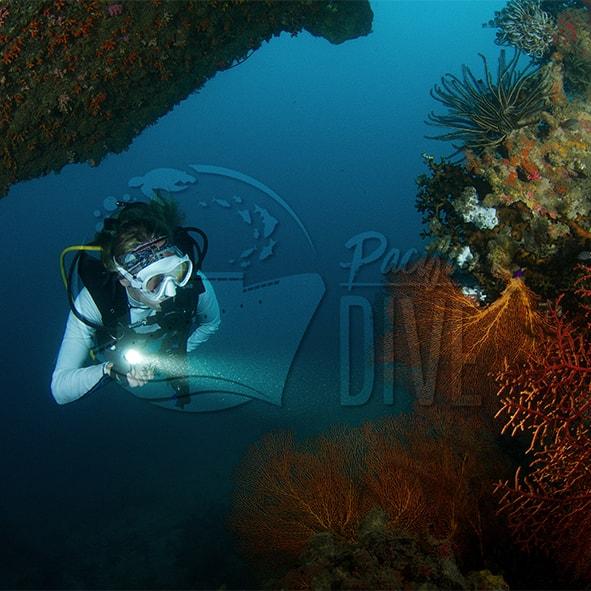Pacific Dive Member Square.jpg