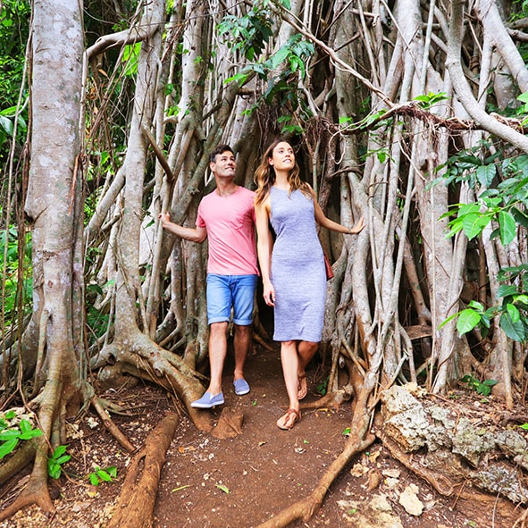 reconnect-with-nature-banyan-tree2-min.jpg