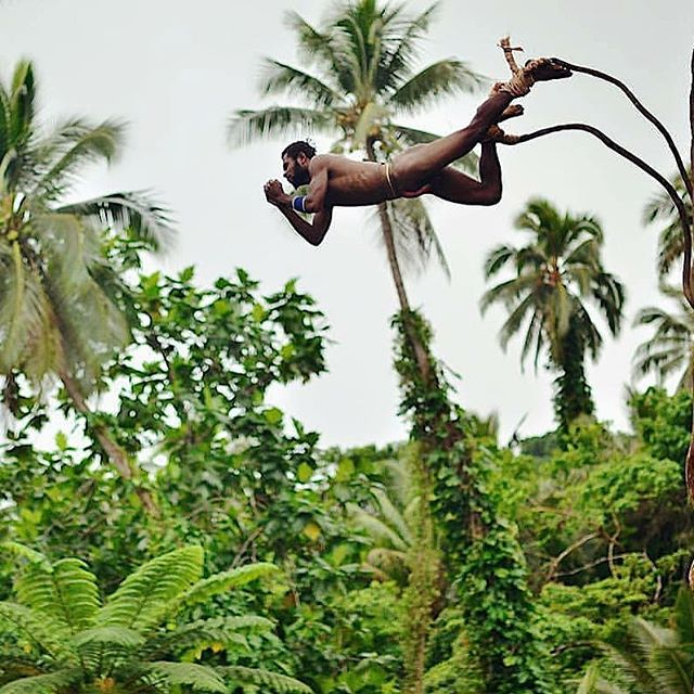 Land diving snapshots 1/3: for the next few days enjoy a series of magnificent land diving photography. Question: during which months of the year can you experience this cultural tradition on the island of Pentecost, Vanuatu? 📷@thomasmperry . . . . #DiscoverSanto #DiscoverPenama #DiscoverVanuatu #Vanuatu #pentecost #landdiving #nagol #culturetrip #kastom #bungeejumping #southpacificislands #islandlife #islandsofadventure #exploremore #travelawesome #travelstoke #theglobewanderer #travelpicsdaily