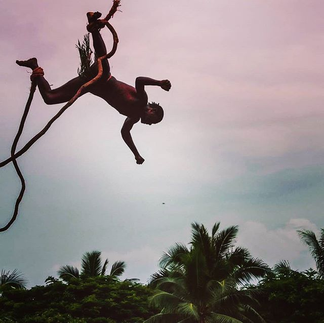 Land diving snapshot 2/3: there are many different styles of jumping. Question: in which country did bungee jumping originate after the inventor drew inspiration from this kastom ceremony in Vanuatu? 📷@pacifiquegirl . . . . #DiscoverSanto #DiscoverPenama #DiscoverVanuatu #Vanuatu #pentecost #landdiving #landdiver #nagol #culturetrip #kastom #bungeejumping #southpacificislands #islandlife #islandsofadventure #exploremore #travelstoke #travelawesome #theglobewanderer #travelpicsdaily #instamood