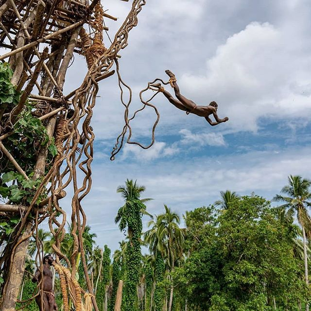 Land Diving snapshot 3/3: what good are wings without the courage to fly? 📷@here.far.away . . . . #DiscoverSanto #DiscoverPenama #DiscoverVanuatu #Vanuatu #pentecost #landdiving #letsgosomewhere #landdiver #nagol #culturetrip #kastom #bungeejumping #exploremore #travelmore #instagood #southpacificislands #pacificparadise #travelpicsdaily
