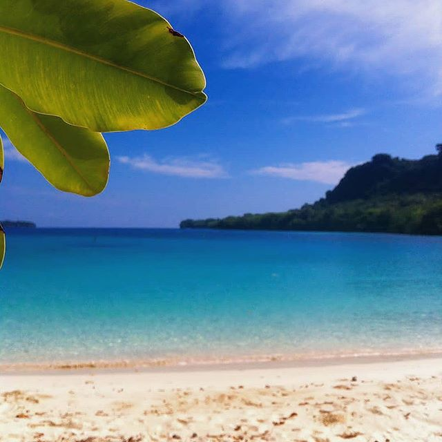 Sun is shining🌞 the weather is sweet🎶 . . . . #DiscoverSanto #DiscoverVanuatu #Vanuatu #EspirituSanto #champagnebeach #blueskies #crystalclear #exploremore #travelpicsdaily #travelmore #theglobewanderer #beachtime #islandlife #islandsofadventure #instagood #instadaily #bestplacestogo #bestbeach #tropicalvacation #southpacificislands #pacificparadise #pacificocean🌊
