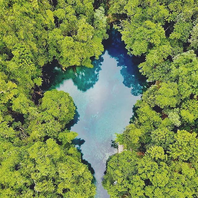 There are still some places left to be discovered 💙 📷@chloebwatts . . . . #DiscoverSanto #DiscoverVanuatu #Vanuatu #EspirituSanto #bluehole #riribluehole #exploremore #discovermore #travelstoke #travelawesome #theglobewanderer #ThisIsSanto #southpacificislands #tropicalvacation #instagood #instawildlife #jungle #islandlove #love💙