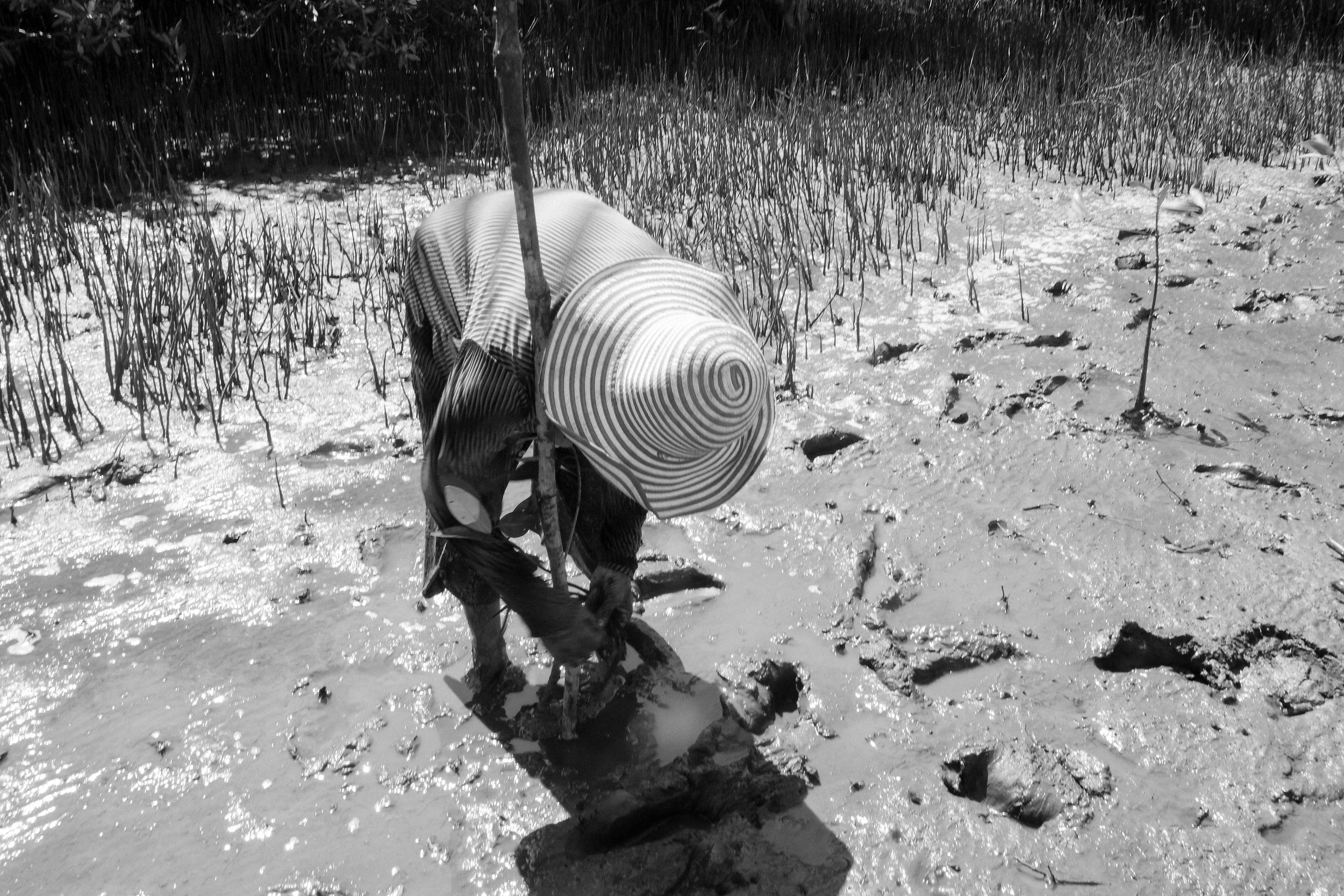 Women in Community Fisheries - The Learning Institute - Cambodia 09.jpg