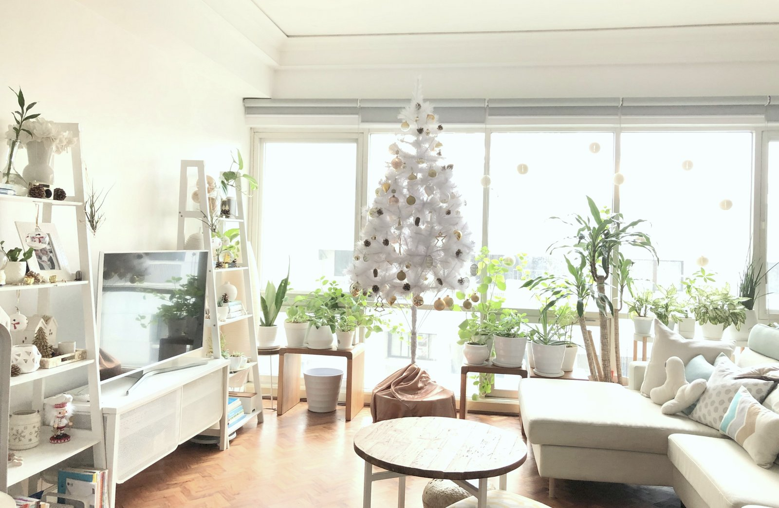 minimaluxe white christmas tropics.JPG