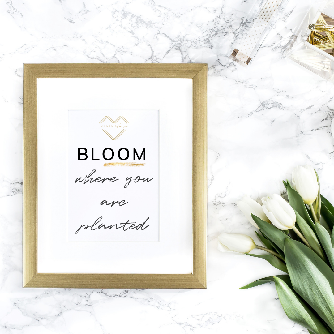 bloom where you a planted quote minimaluxe.png