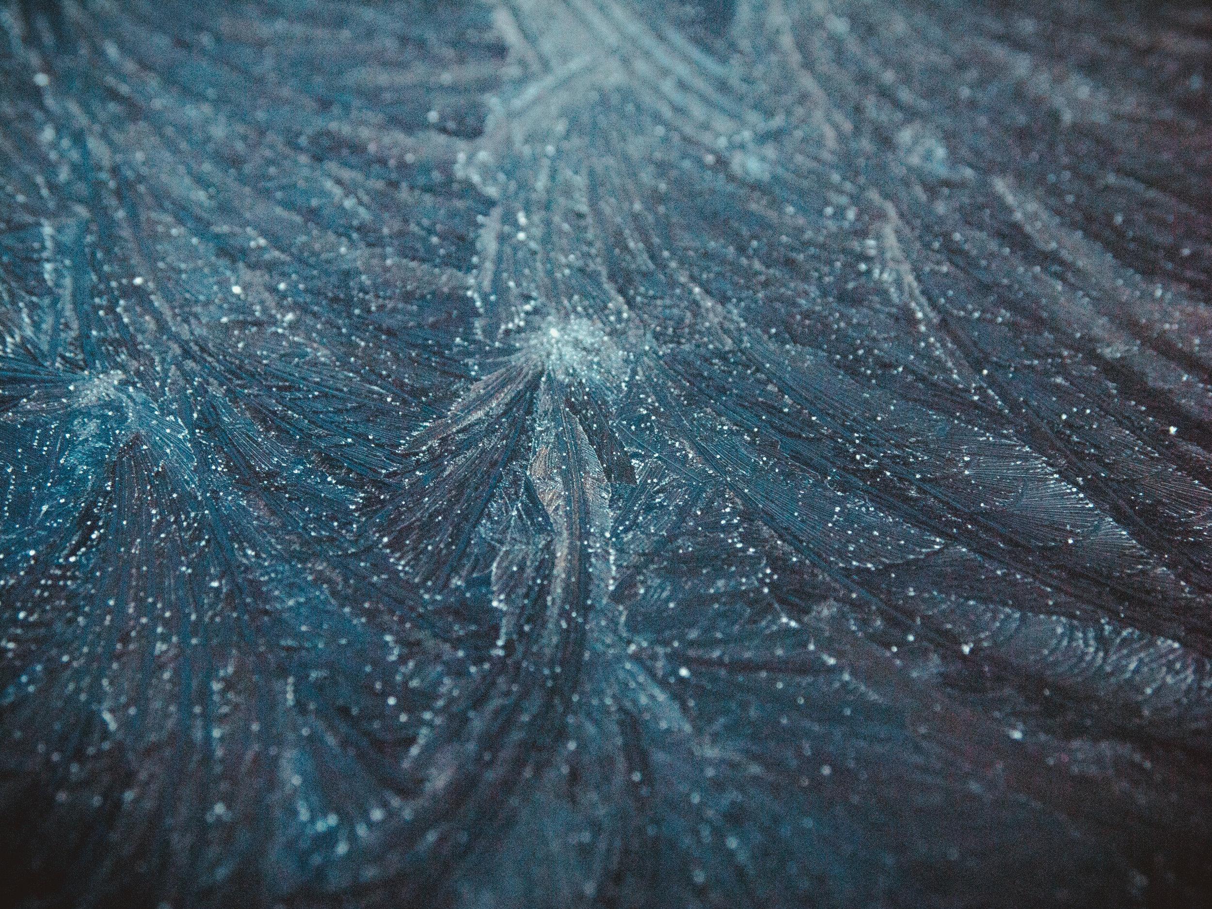 frost-25.jpg