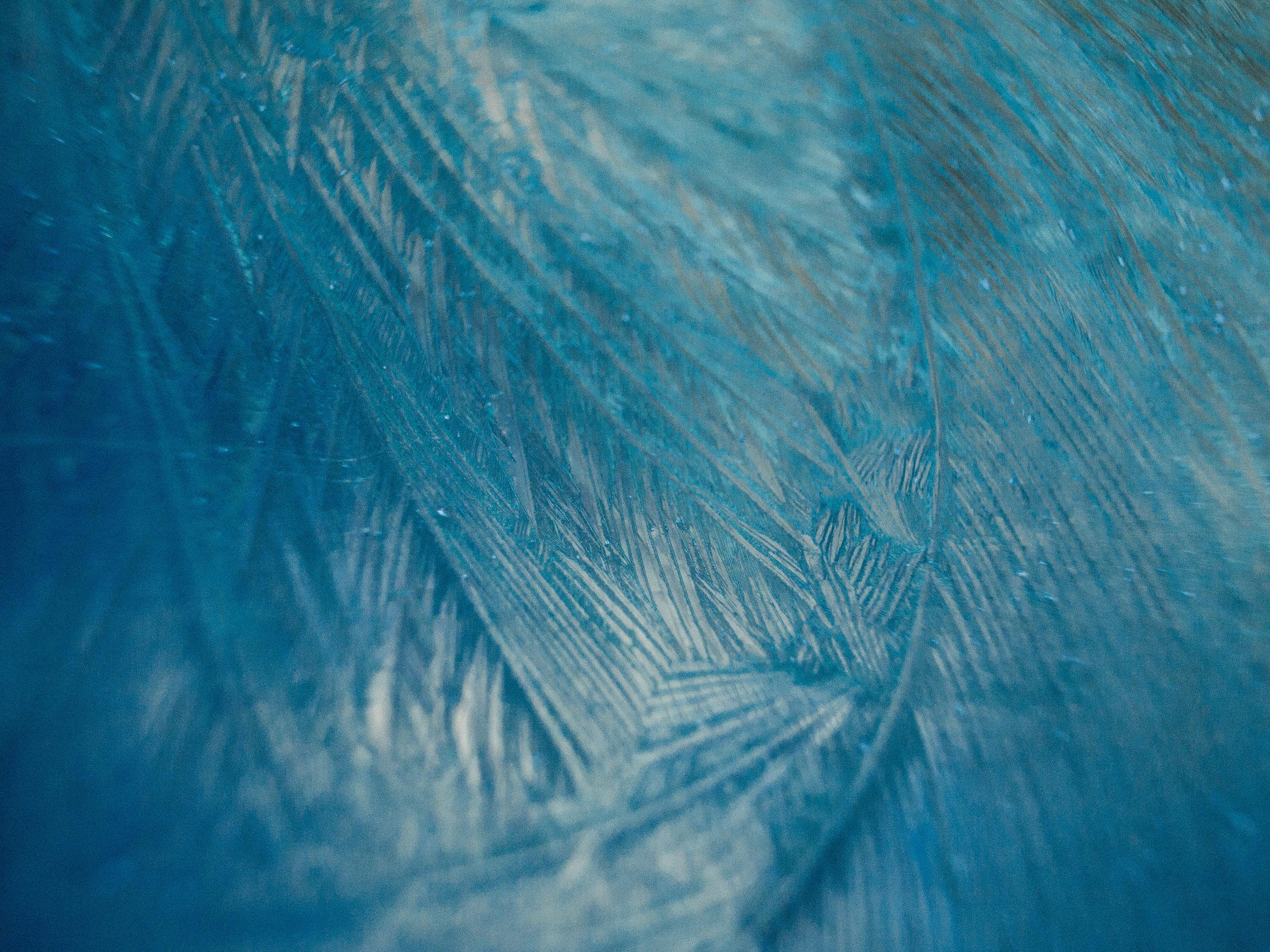 frost-18.jpg