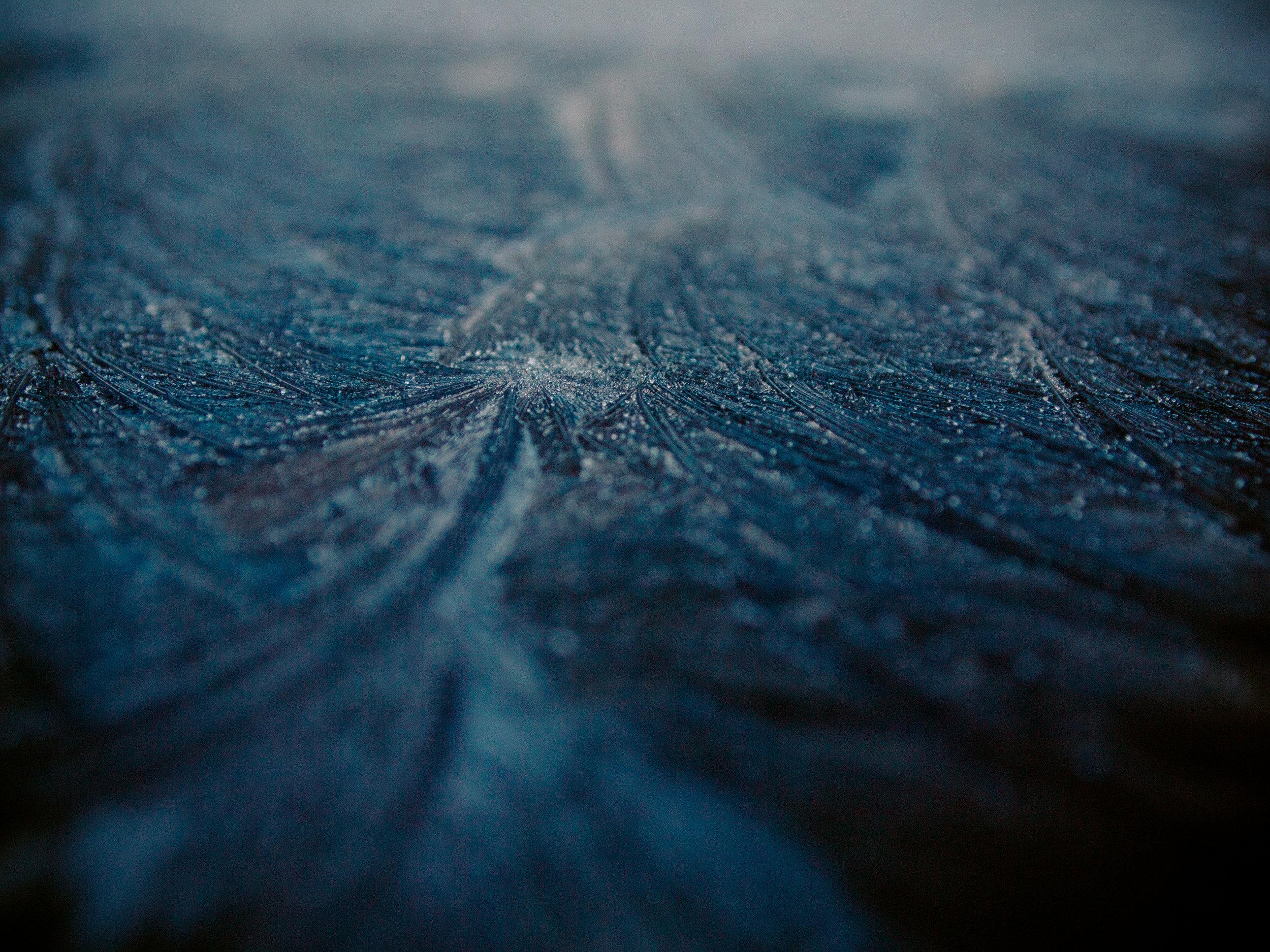frost-24.jpg