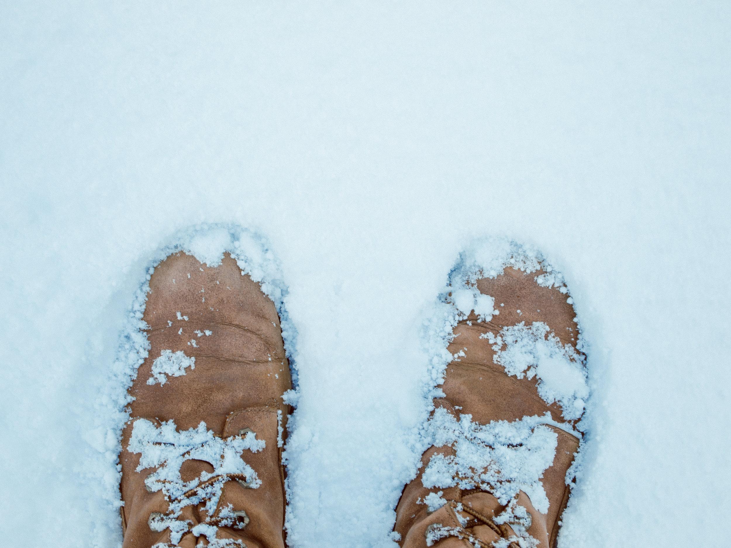 snow-5.jpg