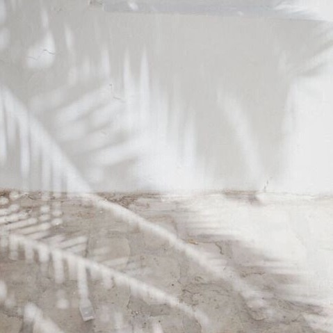 Summer shadows | Monday starts well today, check out our stories | we are on @marieclairehun ✨ #aeneisparis #silkscarf #ethicalfashion #palmtrees #pattern
