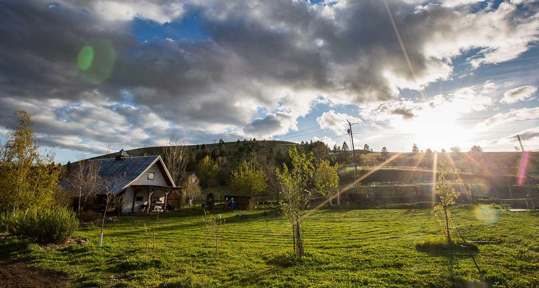 PEAS Farm - Photo by Erika Peterman