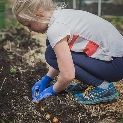 Grow your own - Photo by Erika Peterman