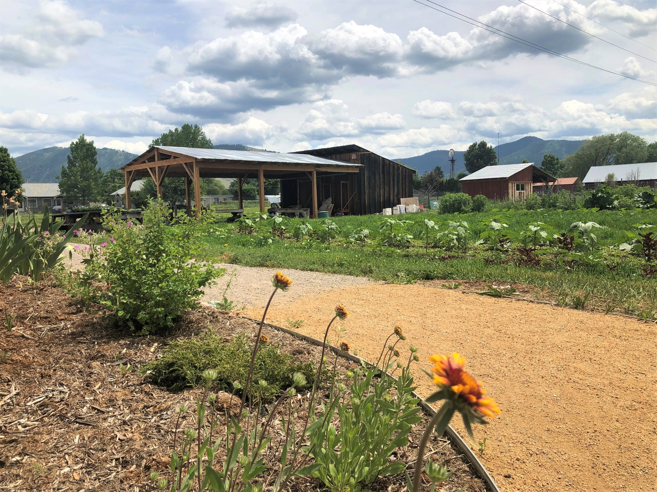 Native garden pathways with River Road Farm views.