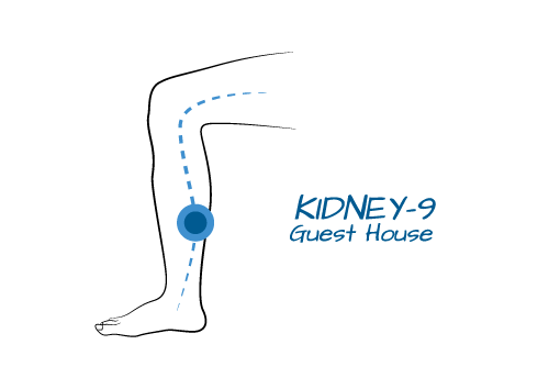 Kidney 9- Guest House  This point is on the Kidney channel which taps into the energy of stillness and a deeper sense of faith in something bigger. Because this point also connects to the energy of the Heart, it helps soothe our spirit and promotes quality sleep. As the name suggests, using this point we are able to step into our life with non-judgemental observation, as if we could be a guest to our own life, and see it through the eyes of someone new.