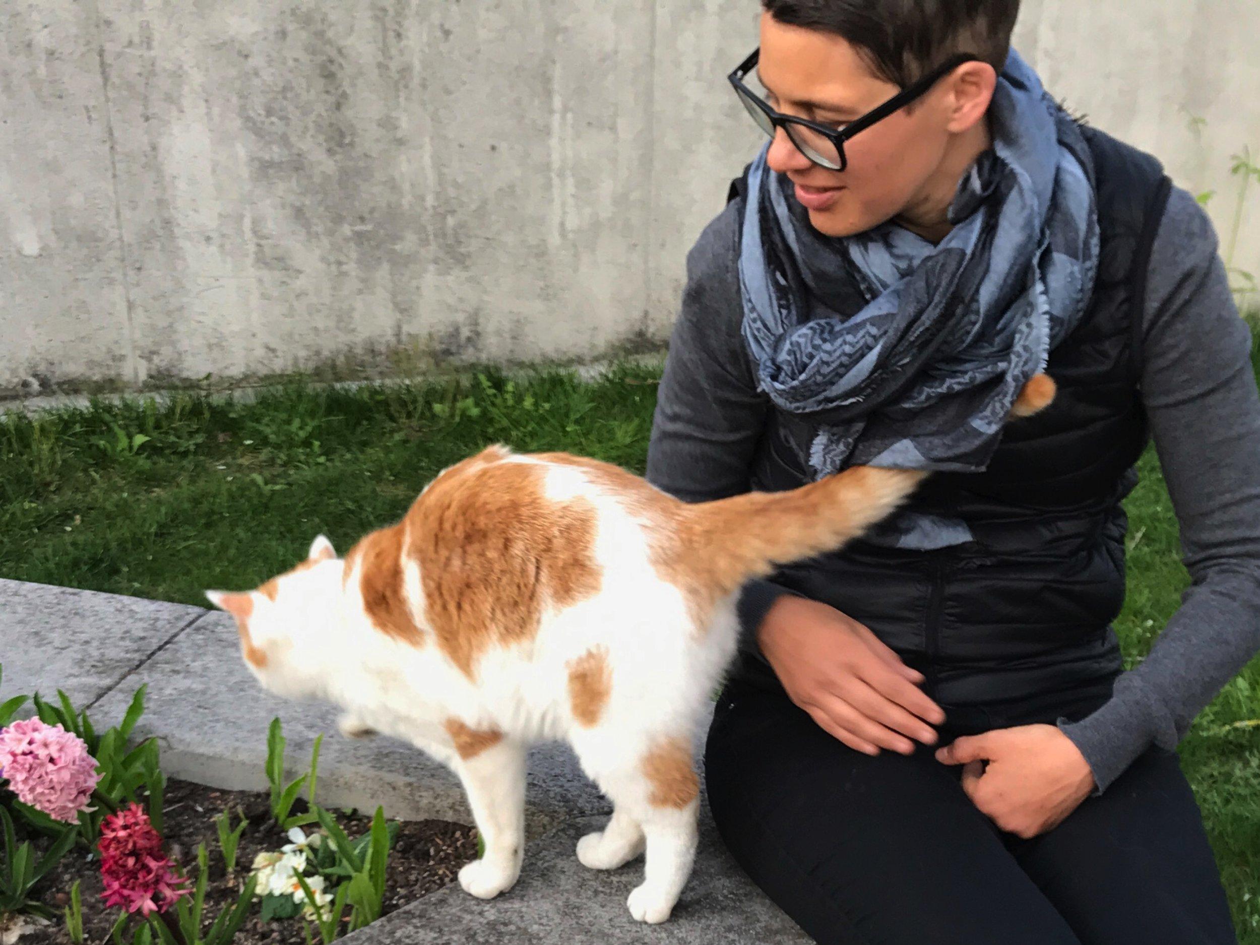 Or petting Fantastic the cat.