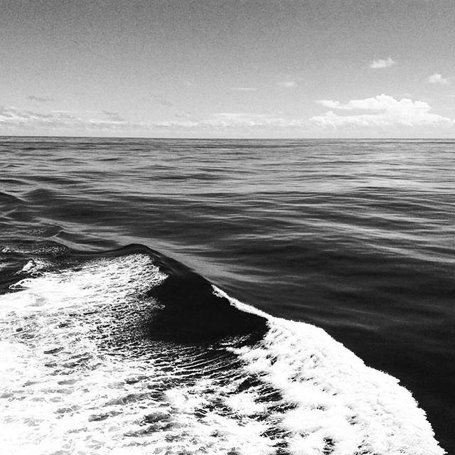 The ocean is a mighty harmonist. -William Wordsworth . . . . . . . . . #photographylife #karinakusdinar #adventure #sailing #oceanlife #harmony #sydneyview #melbournelife #lifeisgood #visittasmania #tuesday #quotestoliveby #lifequotes #selflove #ilovemyjob #traveldiary #visualsoflife #blackandwhite #bnw #bw #nature #sea #noir #blanc #seascape #oceanview #saltyair #seaview #autumnlove