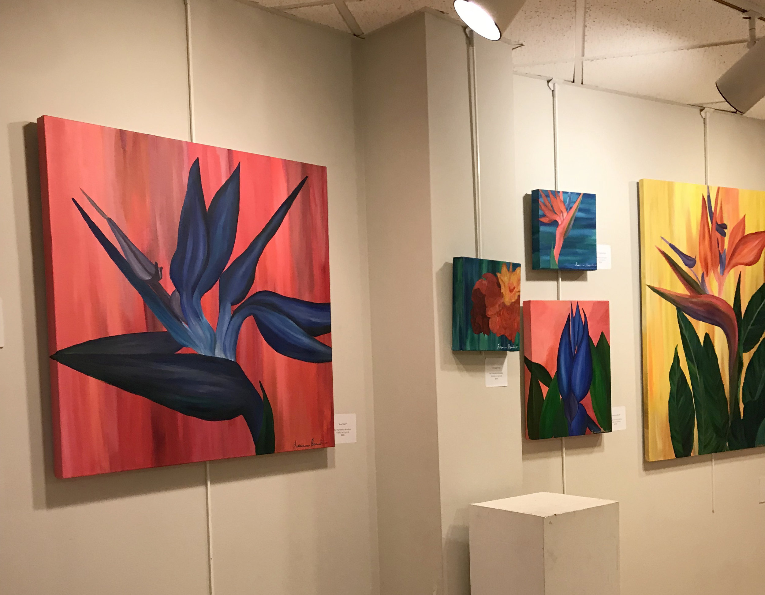 From left to right:  Blue Flight, Orange Rose, Bird of Paradise Blue, Voluptuous Blues, Dual Complexity