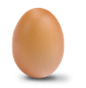 #5 Large Egg