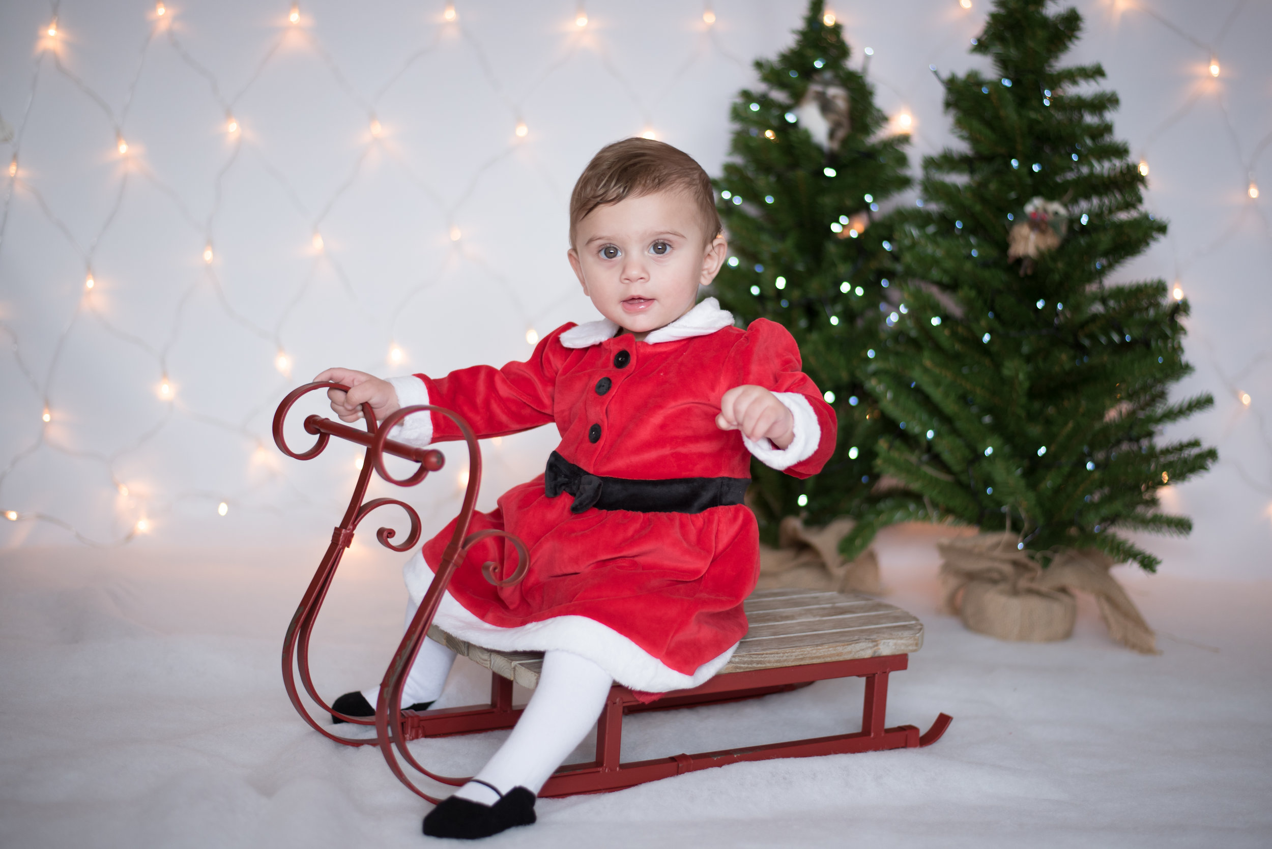 Christmas mini shoot