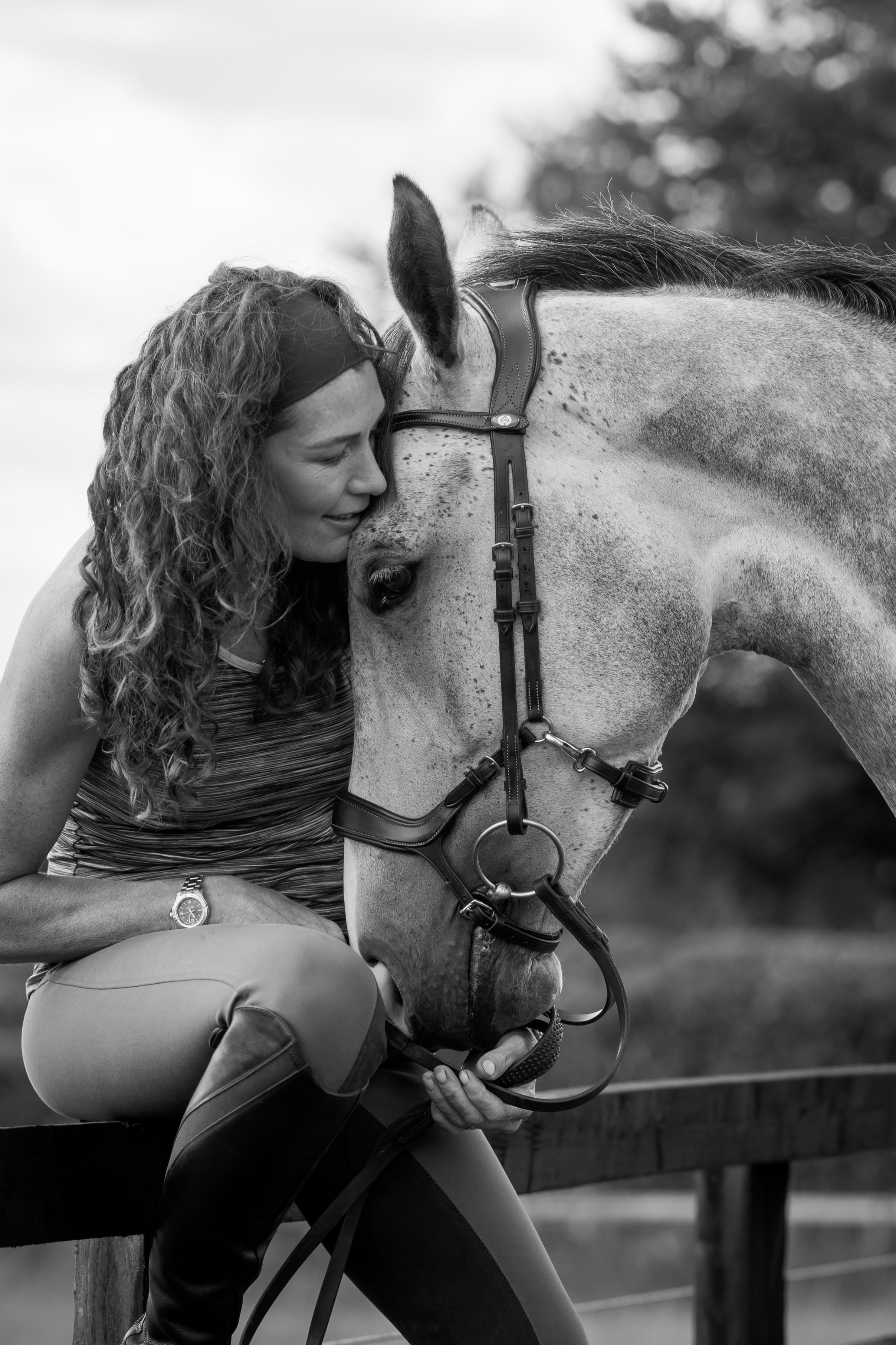 Lancashire horse photographer