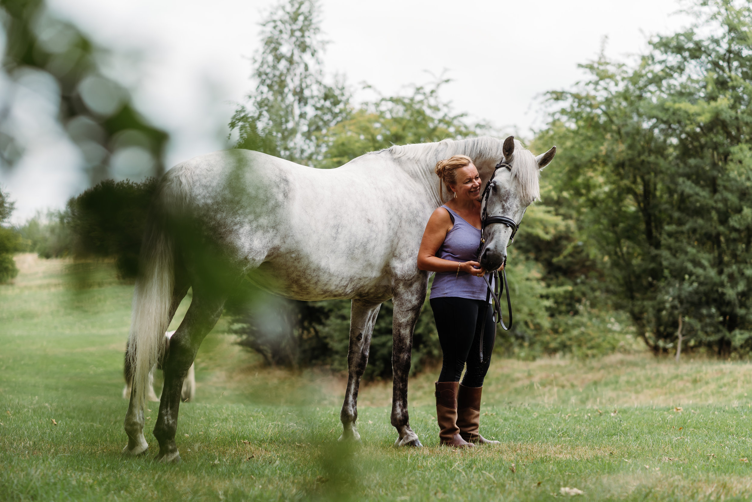 Lancashire horse photograher