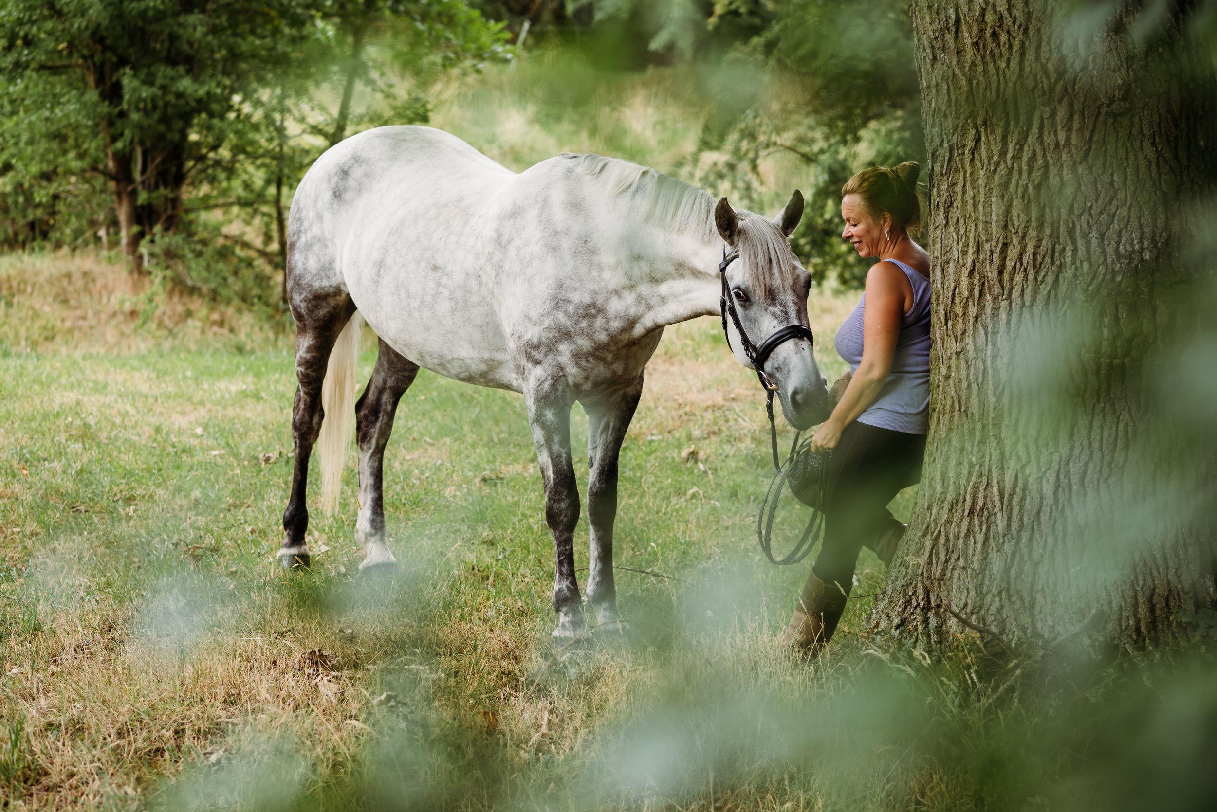 Accrington equestrian shoot