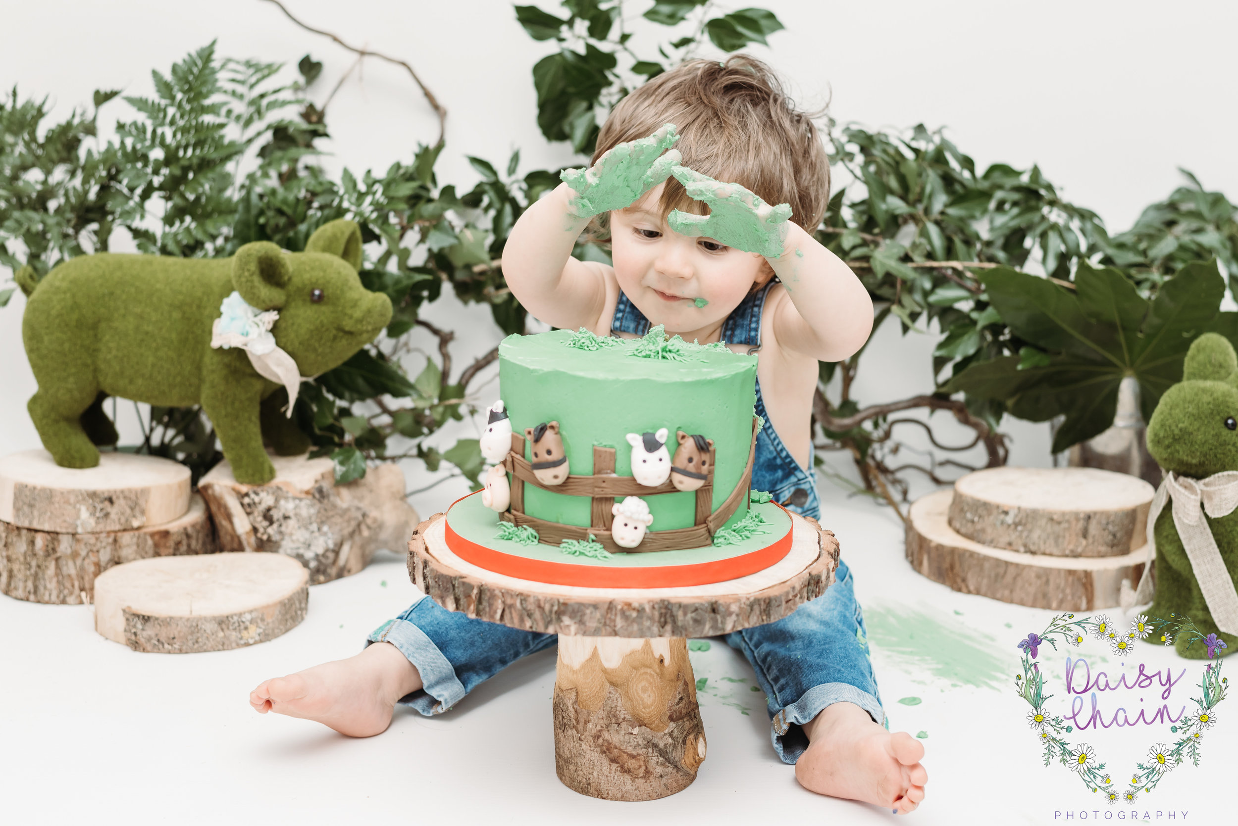 preston family photographer - cake smash