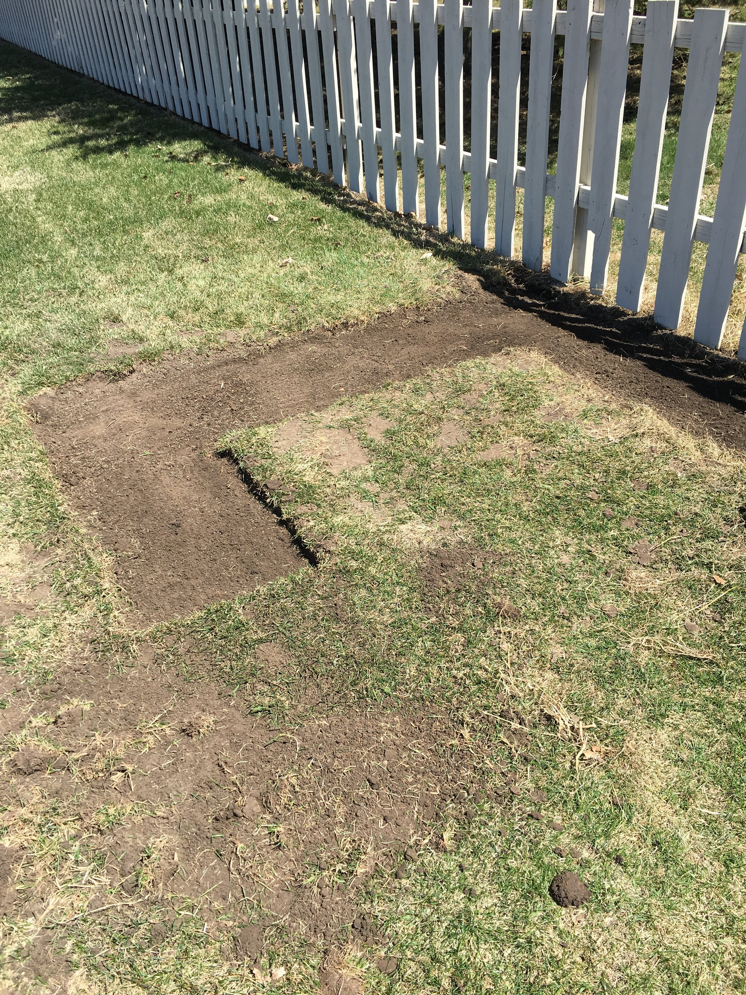 Looks small but it is actually about 10' x12' x 6'. I also have other garden beds (not on pic) that have direct sewn veggie seeds waiting to sprout.