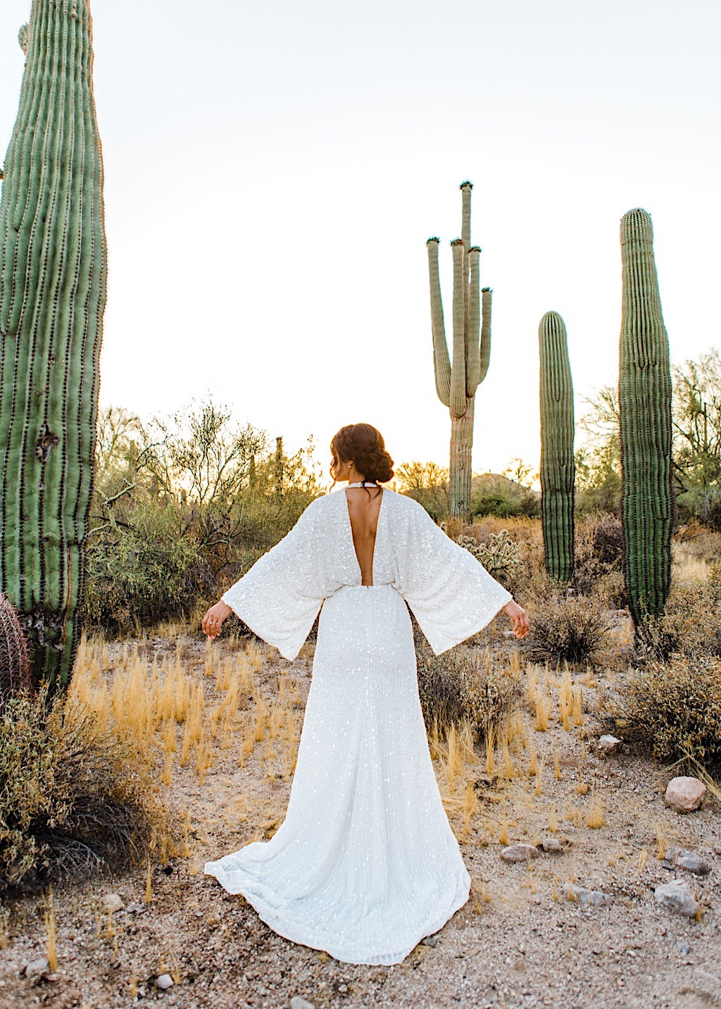 best wedding photographers in arizona