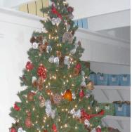 abbot-kinney-tree.jpg