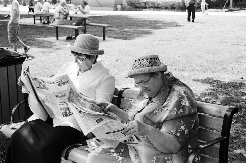 Reading in a Plummer Park