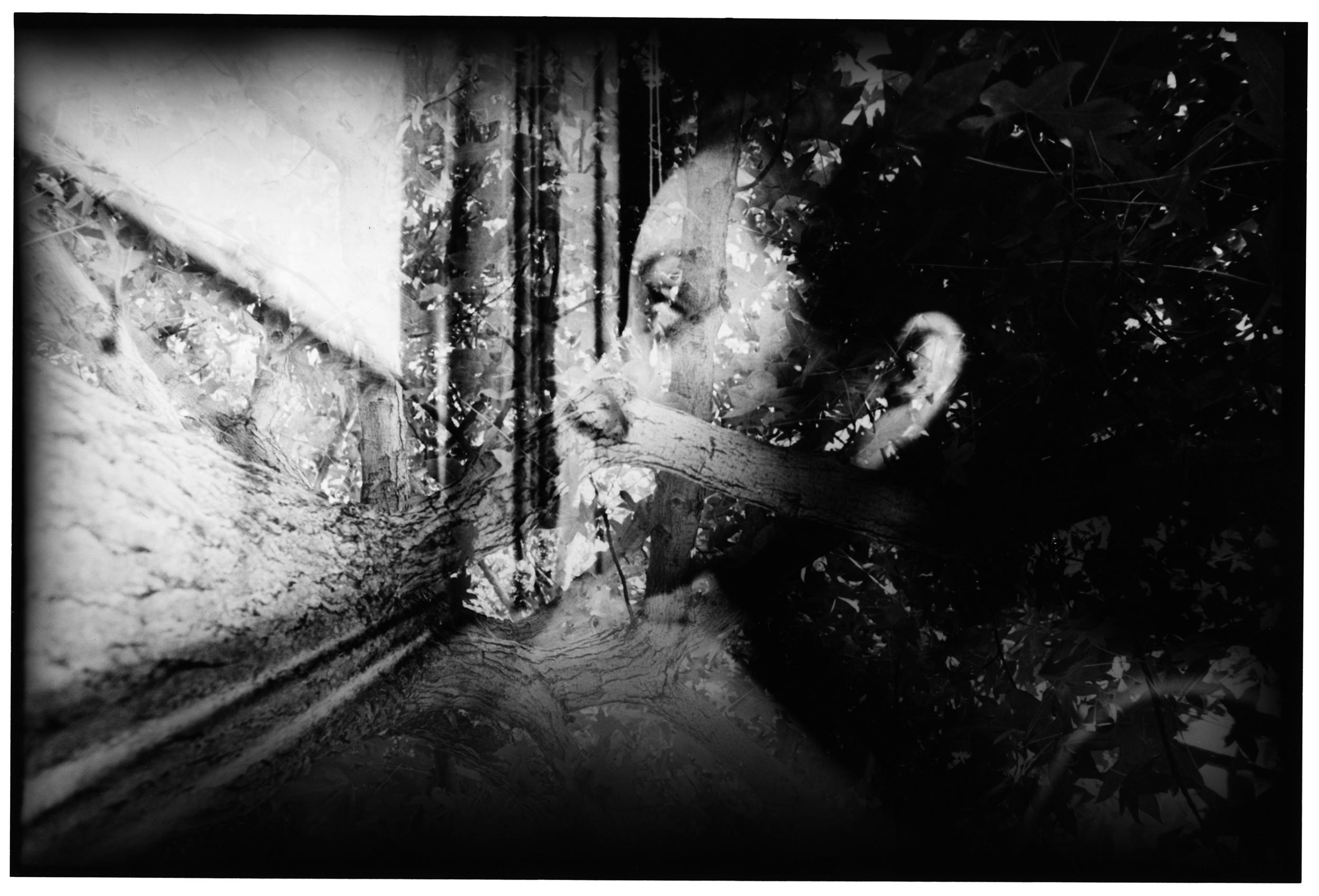 Alex_Blend Self Portrait copy.jpg