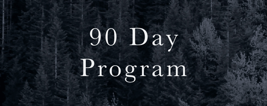190-Day-Program.png