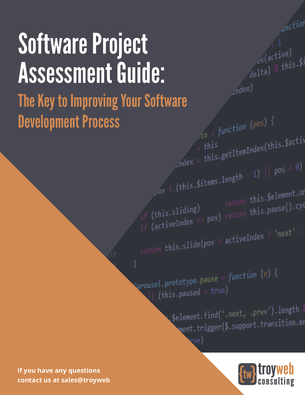 Troy Web Software Assessment Guide image of the Cover