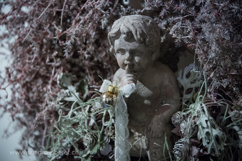 309__D046488_Gartenfenster_Eroeffnung.jpg