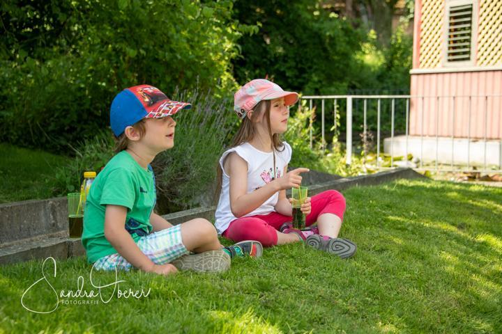 418_850_6304_Gartenfenster-Sommerfest.JPG
