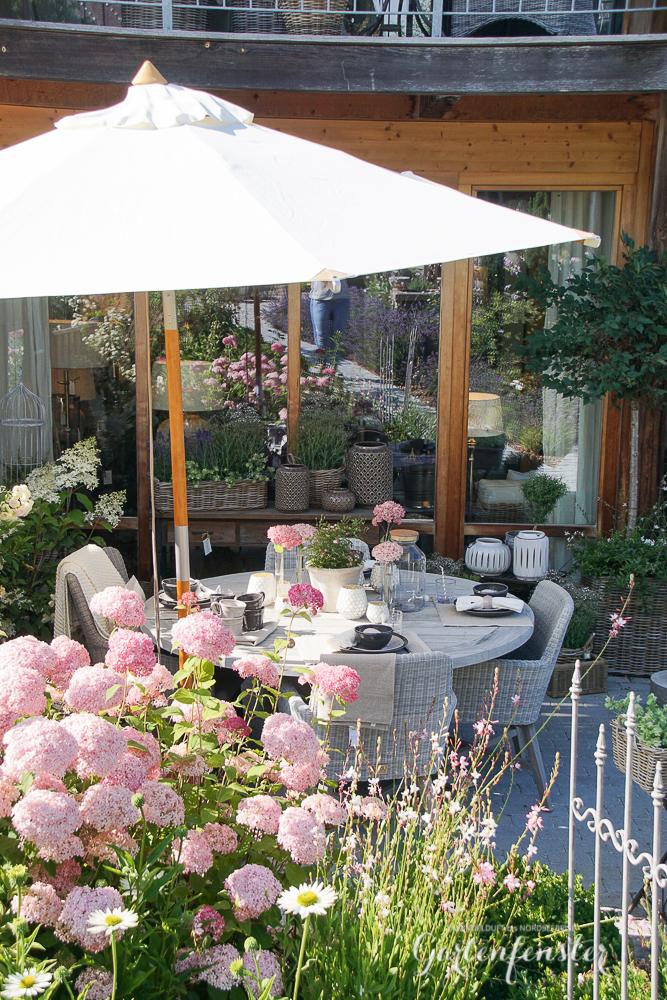 Gartenfenster Hopfenoregano-6.jpg