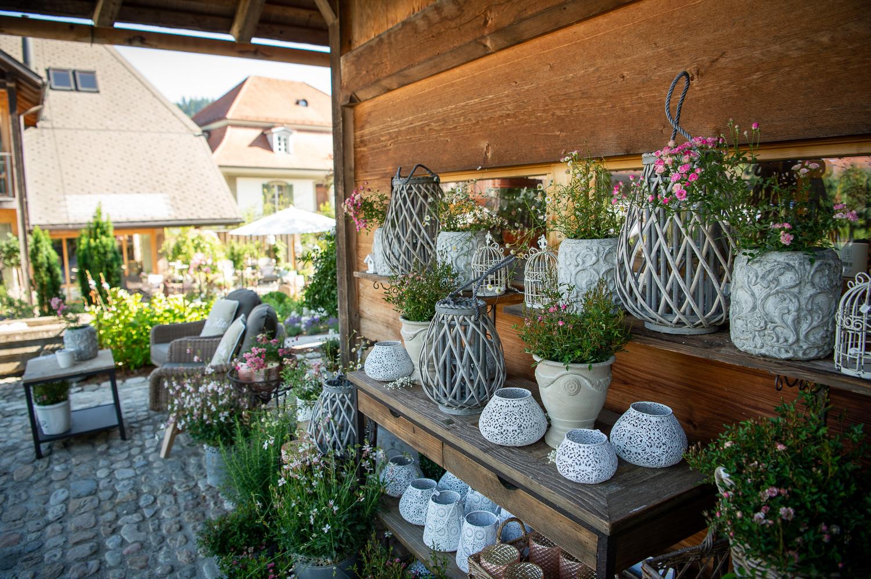 218__D042236_Gartenfenster-Sommerfest.jpg