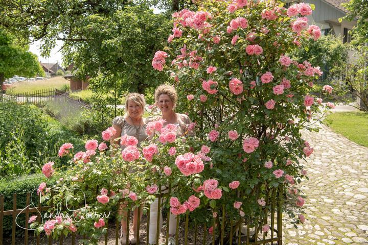 472_850_6414_Gartenfenster-Sommerfest.JPG