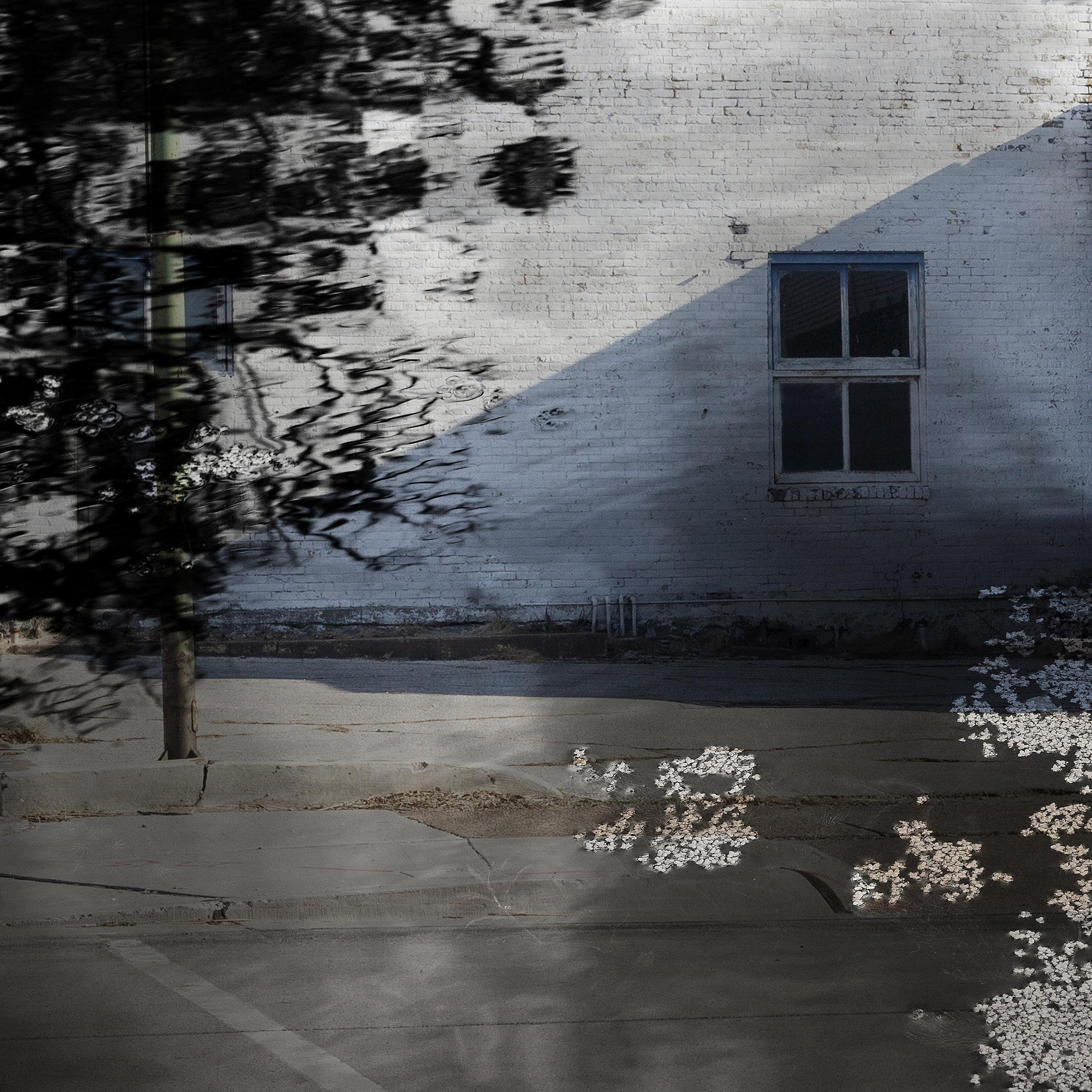 """Escape Route,"" 2018. © Renee Meyer Ernst"