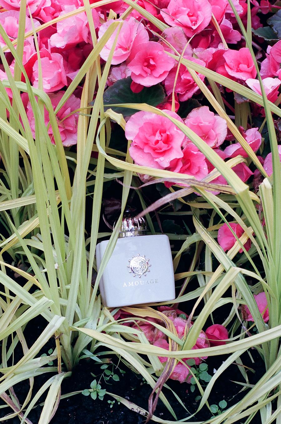 Amouage     Love Tuberose, Eau de Parfum 100ml - £290.00