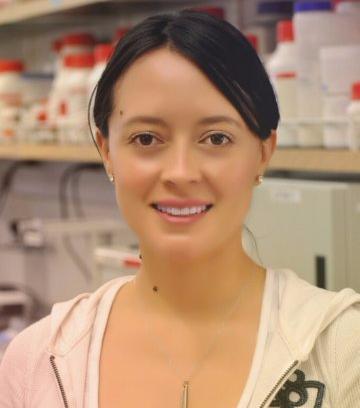 Linda Guamán B.   Technical University of Ambato (Ecuador)