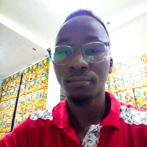Stephane Fadanka    Researcher, MboaLab    Yaoundé, Cameroon